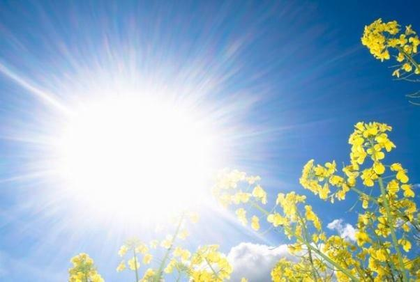 نور خورشید موجب کاهش فشارخون می گردد
