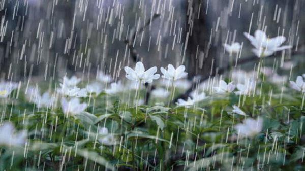 بارندگی ها در کردستان کاهش یافت