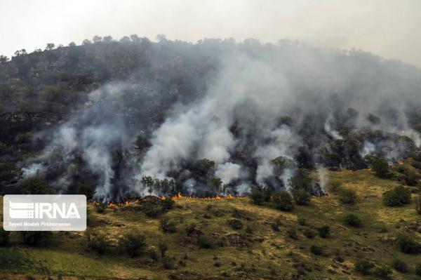 خبرنگاران 10 هکتار از پارک ملی بموی شیراز در آتش سوخت
