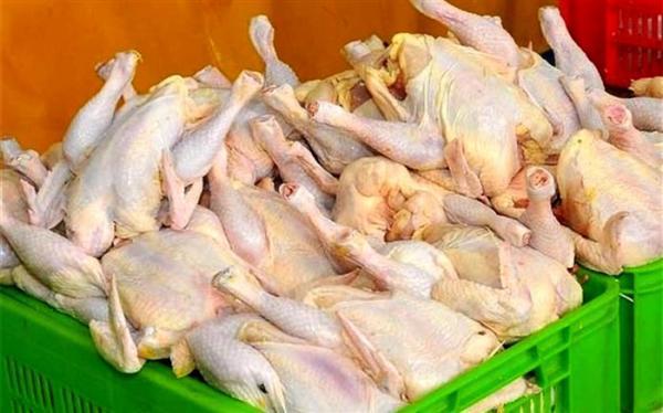 با گرانی دوباره مرغ، همچنان وزارت صمت پاسخگو نیست