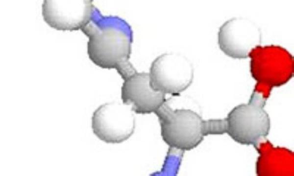 تغذیه درمانی در بیماری آرژنینمیا